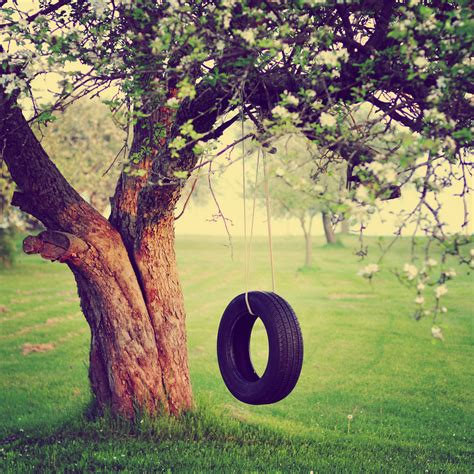 The Old Tire Swing If You Ve Grown Up On A Farm Or In