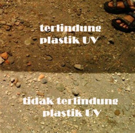 Harga Plastik Uv 6 jual plastik uv 6 lebar 3 meter tebal 200 micron lokal