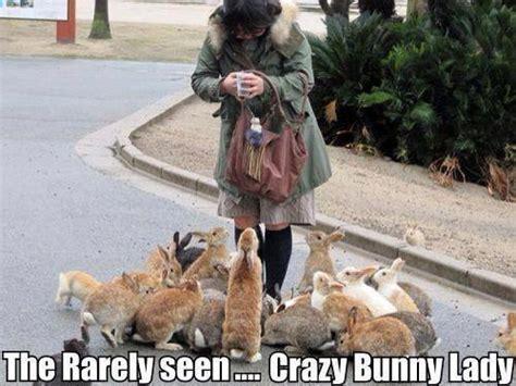 Crazy Dog Lady Meme - crazy bunny lady jokes memes pictures