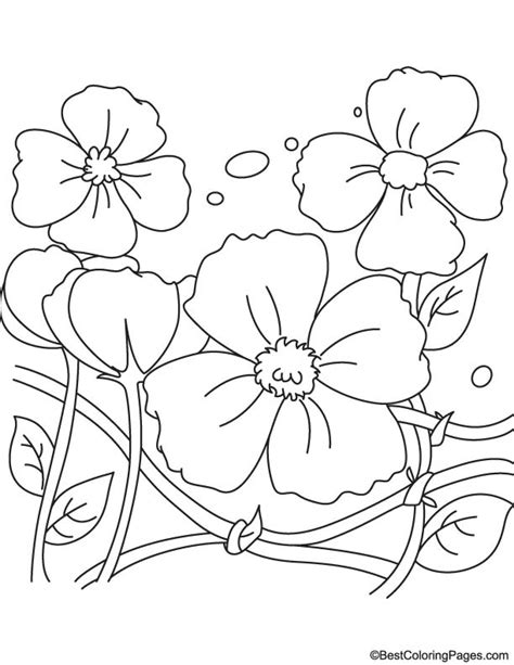 remembrance day coloring pages for toddlers remembrance day poppy coloring pages