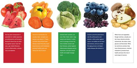 vegetables and their benefits reaping a healthy harvest results