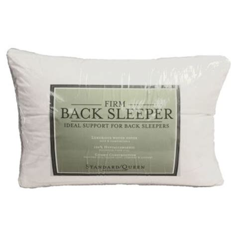 Pillow Allergy Symptoms by Pillows Allergy Relief Pillow Pillow Altmeyer S