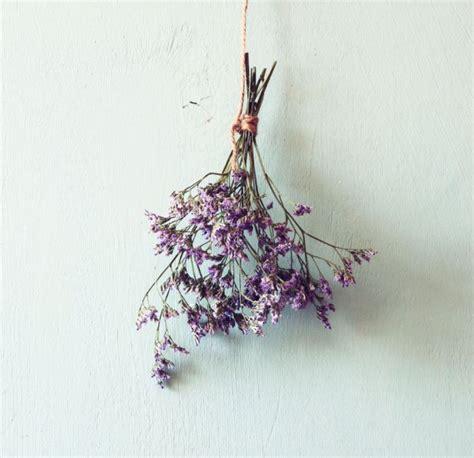 essiccare fiori come essiccare i fiori donnad