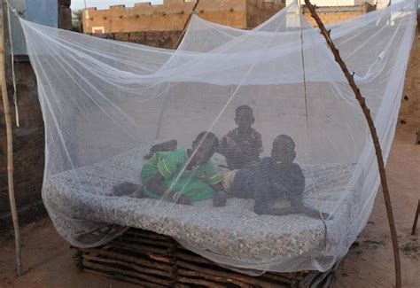 bed net a sobering return southeastern iowa synod