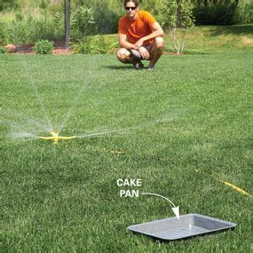 late summer lawn care lawn care how to repair a lawn lawn care late summer