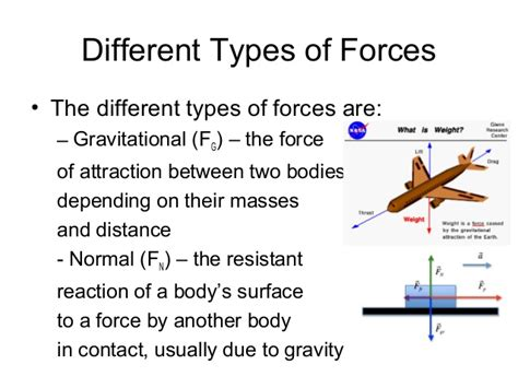 what is the difference in the different types of bellami hair physics 504 chapter 12 13 different types of forces