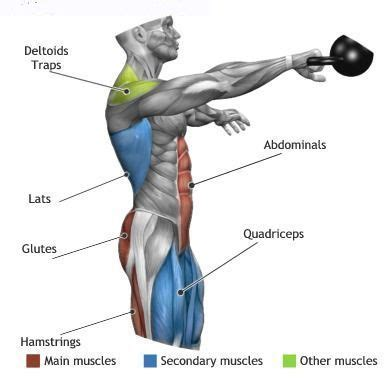 kettlebell swing muscles used kettlebell swings effect the above muscle groups