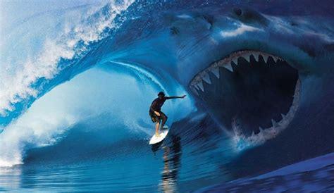 Film Cu Ombak | opinion just kill the damn sharks the inertia
