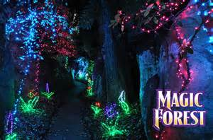 enchanted forest lights enchanted garden of lights rock city