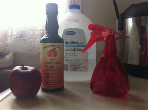 apple vinegar for face apple cider vinegar face toner for eczema and sensitive