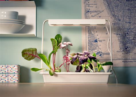 indoor hydroponic wall garden ikea launches indoor garden that can grow food all year