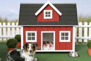 Small Dogs For Home All The Best Home House Designs 2011