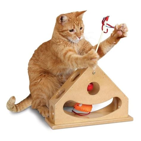 Mainan Kucing Cat Teaser Catnip smartcat tick tock teaser cat by pets manic