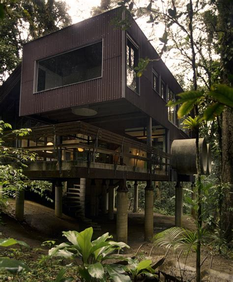 peppermags architecture jungle house
