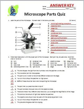 Parts Of A Microscope Worksheet Answers by Microscope Parts Quiz Editable By Tangstar Science Tpt