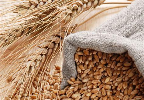 alimenti integrali alimenti integrali sai riconoscerli edo