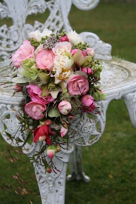 fiori primaverili elenco fiori primaverili elenco fiori primaverili da giardino l