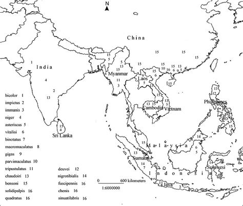 blank physical map of asia best photos of asia map worksheet asia map coloring page