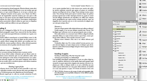 book design template for indesign birds before the storm
