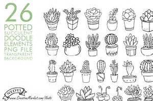 potted succulent cactus hand drawn illustrations on creative market