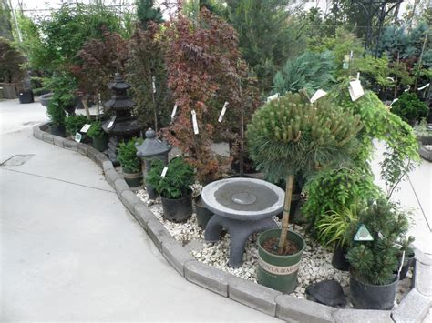Garden Centre Ideas 1000 Images About Nursery Display Ideas On Pinterest Garden Centre Succulents And Retail
