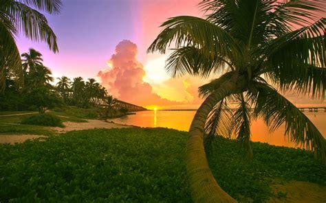 top  beautiful  amazing sunset wallpapers  hd