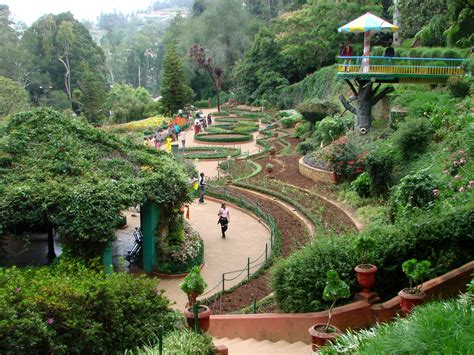 Indian Botanical Garden File Botanical Gardens Ootacamund Ooty India 03 Jpg