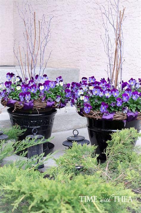 Pansy Garden Ideas Stunning Pots Urns Omg Lifestyle