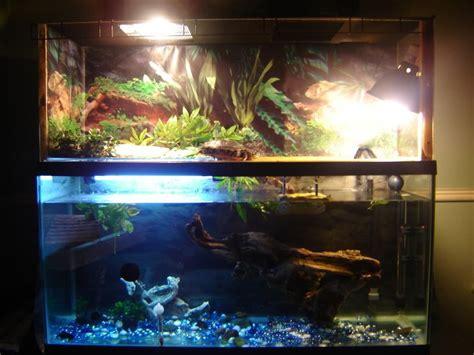 turtle tank basking ideas tank basking platform indoor setups aquariums and tubs turtle 2017