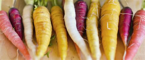 large root vegetables root vegetables a list of veggies that will make your