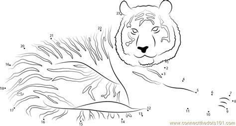 printable tiger dot to dot tiger look at me dot to dot printable worksheet connect
