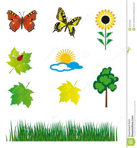 imagenes componentes naturales conjunto de elementos naturales foto de archivo libre de