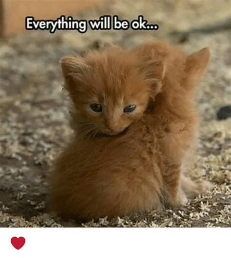 It Will Be Ok 25 best memes about everything will be ok everything