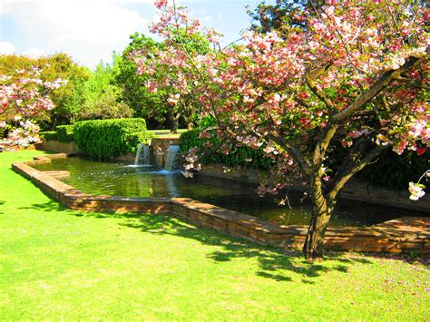 Botanical Gardens Pretoria Must See Areas In Gauteng