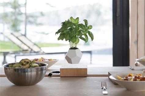 floating pots   house plants levitate