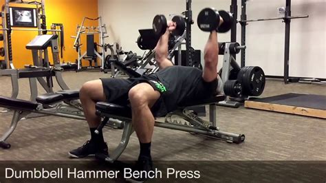 hammer dumbbell bench press dumbbell hammer bench press youtube