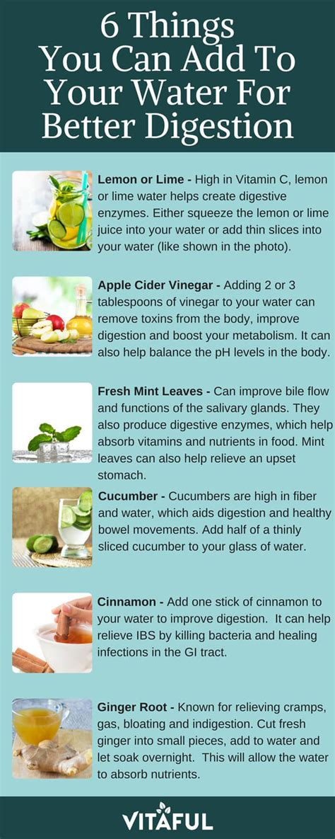 Can You Detox Your With Water by Detox Water 6 Things You Can Add To Your Water To Improve