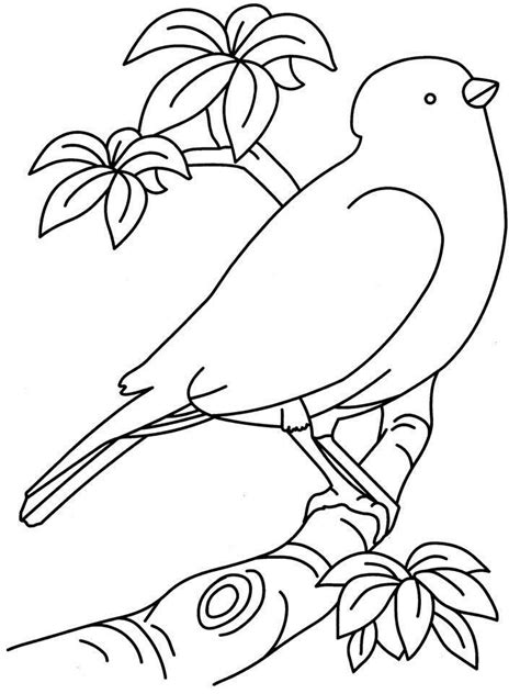 cartoon birds nest az coloring pages