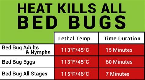 bed bug heat treatment effectiveness how to get rid of bed bugs in one day erdye s pest control