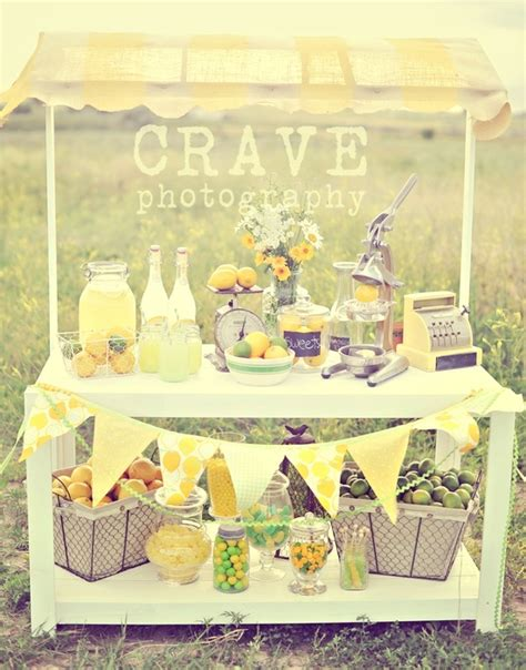 themes ideas for summer c 14 best images about lemonade stand on pinterest
