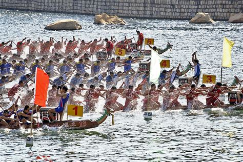 dragon boat festival edgewater festa delle barche drago wikipedia