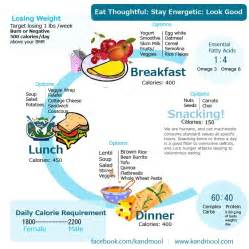 daily diet plan to reduce belly diet plan