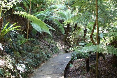 Canberra Travel Guide Canberra Botanical Gardens