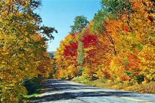 new fall colors fall colors nature wallpapers in hd hd nature