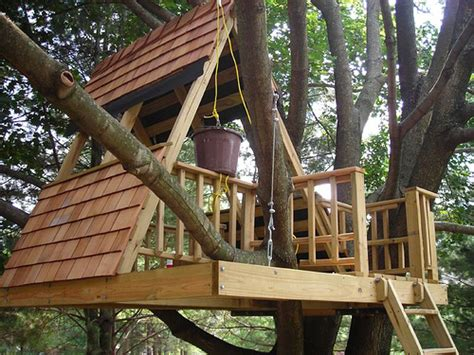 Diy Treehouse Plans Plans How To Build A Solid Tree House Icontemplate