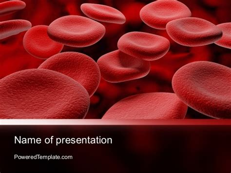 Rbc Cells Powerpoint Template By Poweredtemplate Com Blood Ppt Templates Free