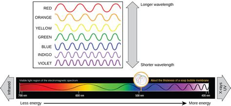 which color has the shortest wavelength reading spectrums of light biology early release