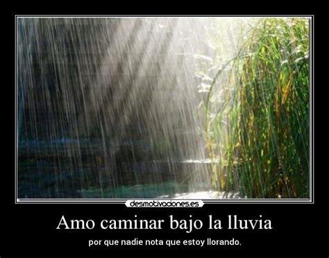 imagenes romanticas bajo la lluvia caminar bajo la lluvia imagenes con frases de amor frases