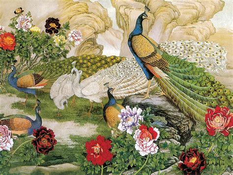 beautiful birds  peacock bird nice painting poster pics
