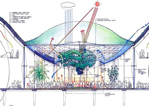 California Section by The New Green California Academy Of Sciences Unveiled